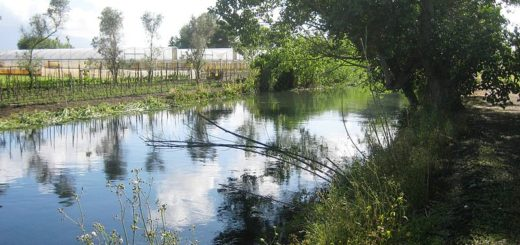 fiumesarno-striano