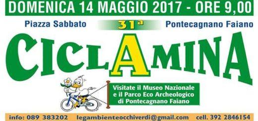 ciclamina2017
